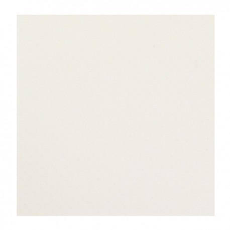BACHE PVC 600GR/M² BLANC CONFECTIONNEE AVEC OEILLETS TS LES 50CM