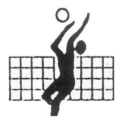 FILET DE VOLLEY BALL 1M x 9M5