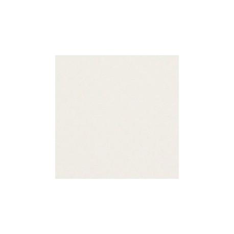 BACHE PVC 600gr/m²BLANC SUR MESURE CONFECTIONEE OEILLETS TOUS LES 3OCM 2M X 4M10